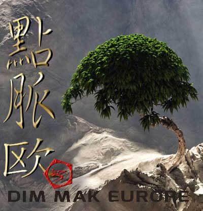 Dim Mak Europe, Kyusho Jitsu, Qi Gong Ji-Chu en Kyusho Jitsu